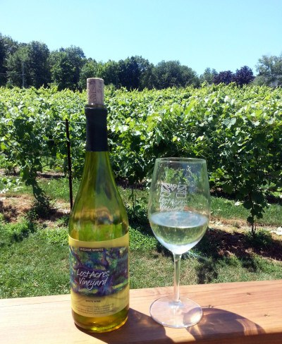 Vineyards, blueberry picking, blueberry and peach crumble