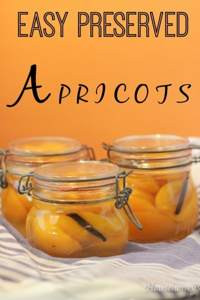 EASY PRESERVED APRICOTS!