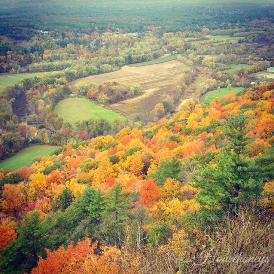 Autumn In New England (and other random tidbits)