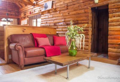 livingroomrug-4