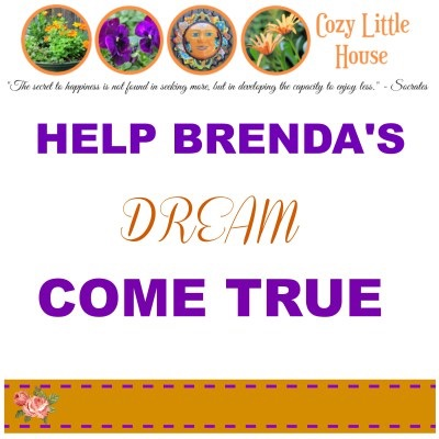 It's Time To Help Brenda
