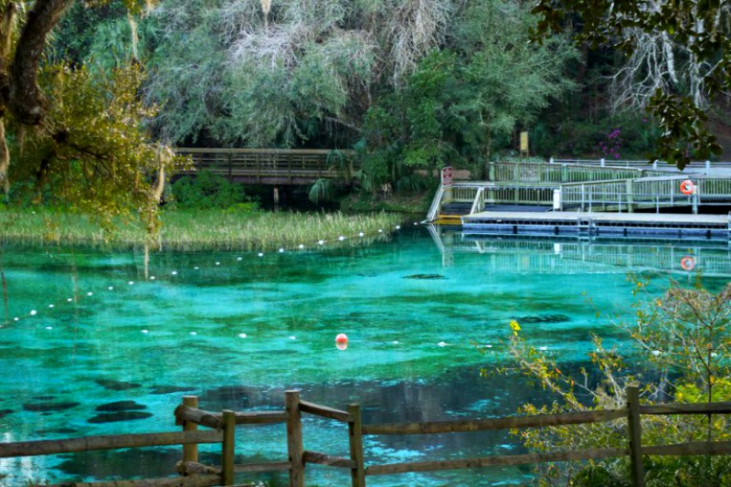 Rainbow Springs, Florida