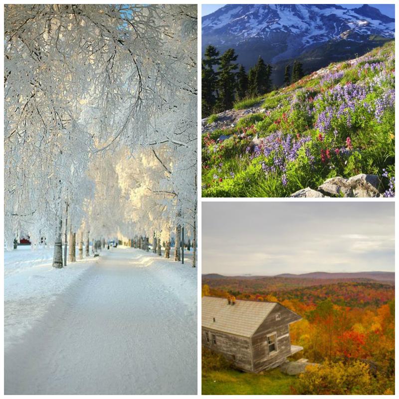 seasoncollage