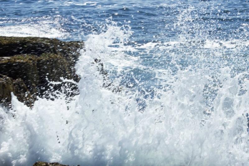Acadia:Nature's Miracle