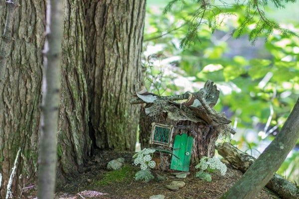 fairy garden in vermont